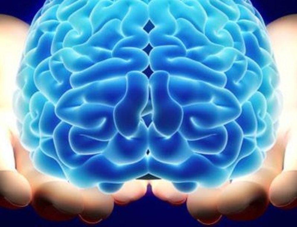 Beyninizi Ne Sıklıkla Besliyorsunuz?